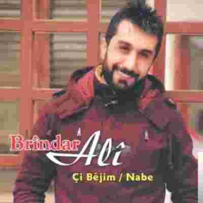Çi Bejim/Nabe (2014) albüm kapak resmi