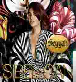 Seyyah (2011) albüm kapak resmi