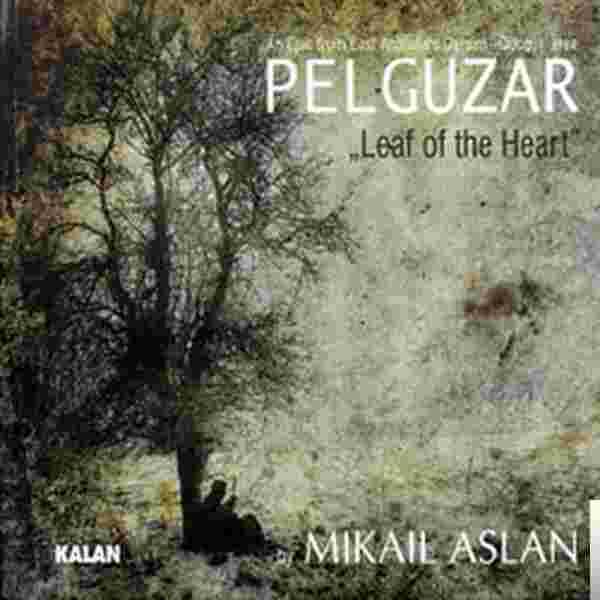 Pelguzar (2010) albüm kapak resmi