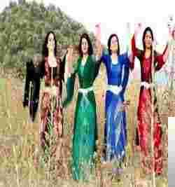 Dengen Ciwan (2009) albüm kapak resmi