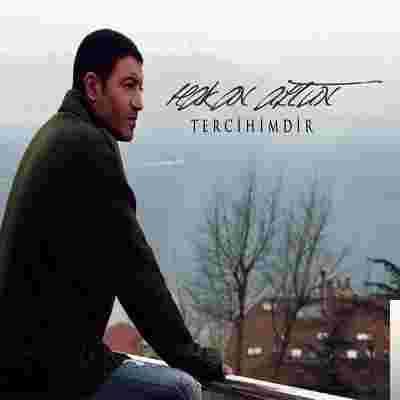 Tercihimdir (2010) albüm kapak resmi