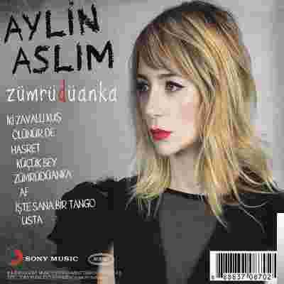Zümrüdüanka (2013) albüm kapak resmi