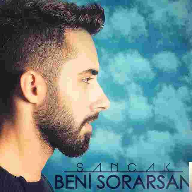 Beni Sorarsan (2015) albüm kapak resmi