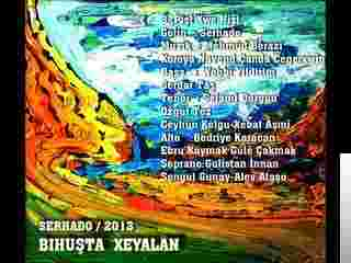 Bihuşta Xeyalan (2013) albüm kapak resmi