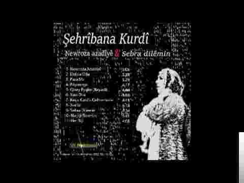 Newroz Azadiye/Sebra Dilemin (2016) albüm kapak resmi