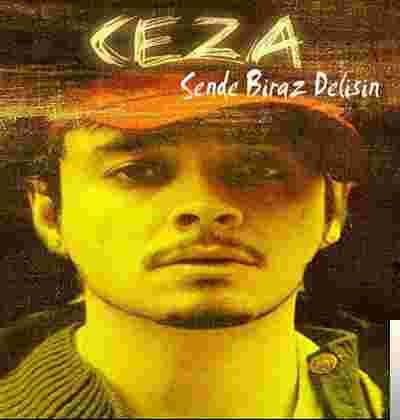 Sen De Biraz Delisin (2011) albüm kapak resmi