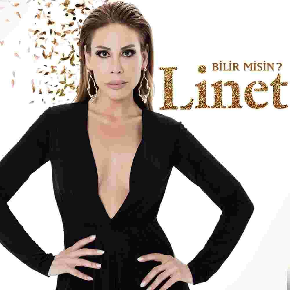 Bilir Misin (2018) albüm kapak resmi