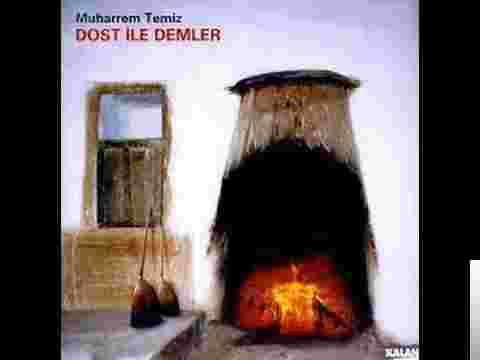 Dost İle Demler (2003) albüm kapak resmi