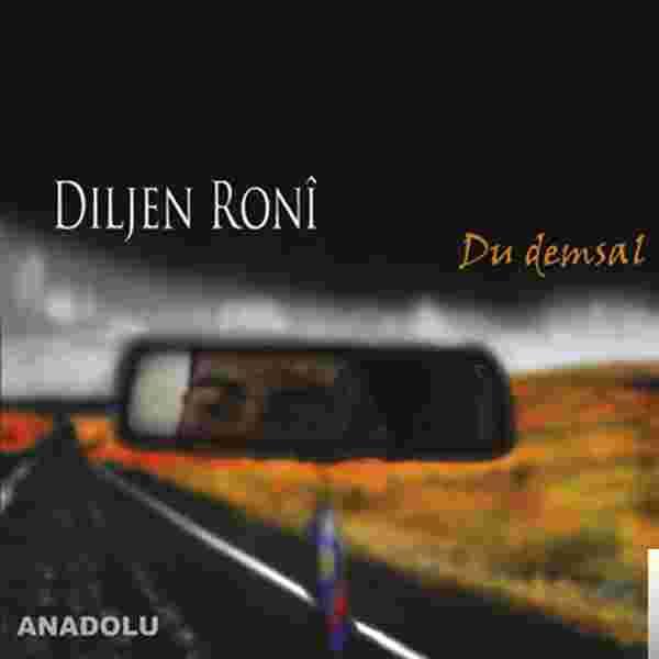 Du Demsal (2011) albüm kapak resmi
