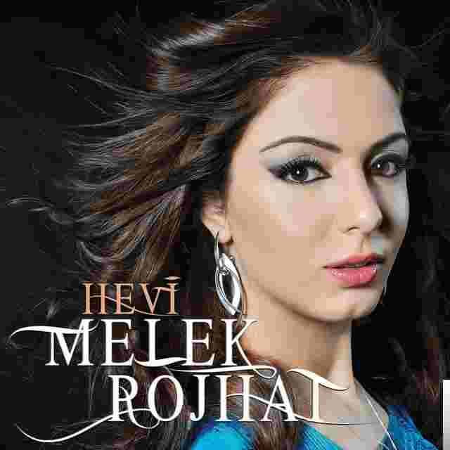 Hevi (2014) albüm kapak resmi