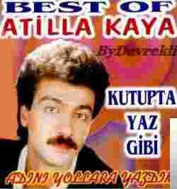 Kutupta Yaz Gibi (2000) albüm kapak resmi