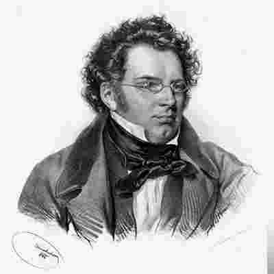 Franz Schubert albüm kapak resmi