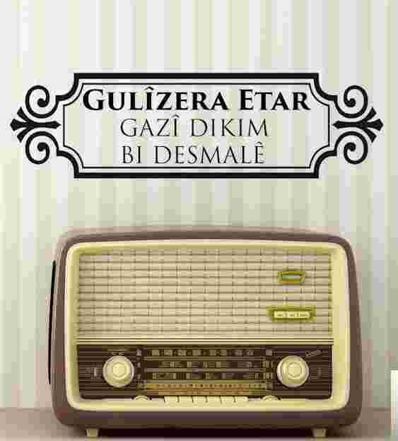 Gazi Dikim (2011) albüm kapak resmi