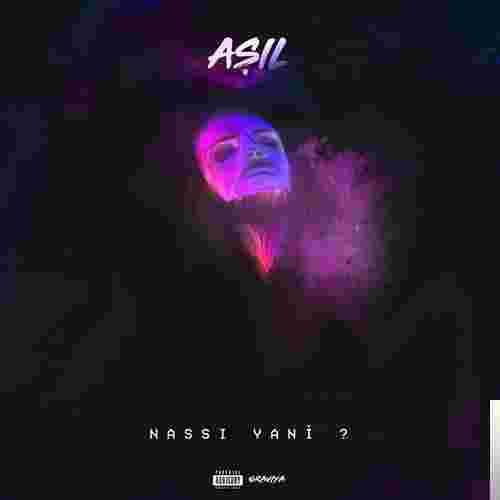 Nassı Yani (2018) albüm kapak resmi