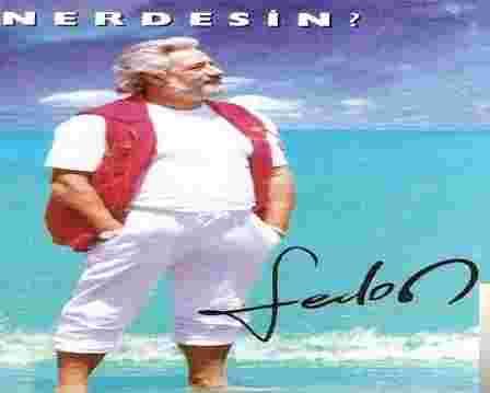 Nerdesin (1994) albüm kapak resmi