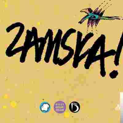 Zamska (2009) albüm kapak resmi