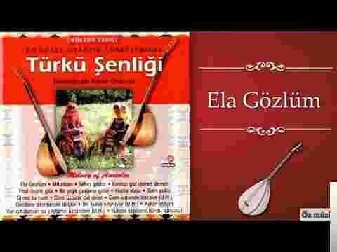 Türkü Şenliği (2003) albüm kapak resmi