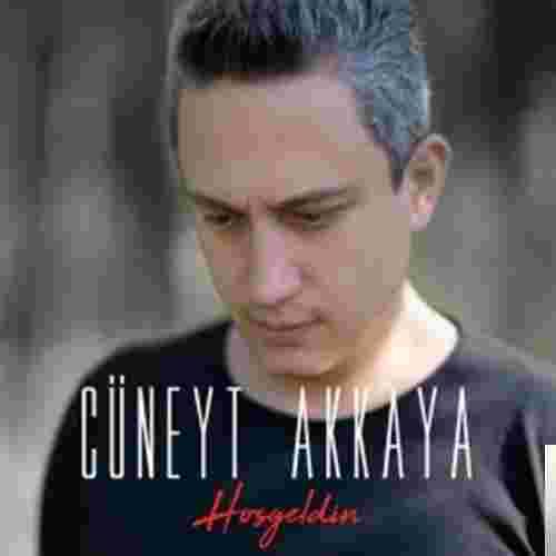 Hoşgeldin (2018) albüm kapak resmi