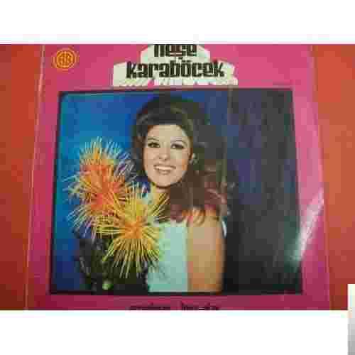 Arranjman (1971) albüm kapak resmi