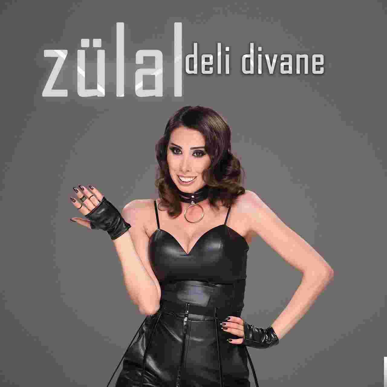 Deli Divane (2018) albüm kapak resmi