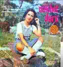 Aklımda Sen Fikrimde Sen (1974) albüm kapak resmi
