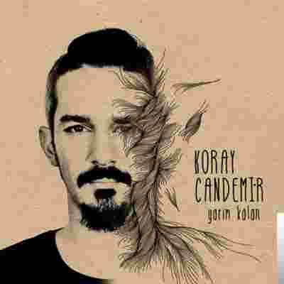 Yarım Kalan (2013) albüm kapak resmi