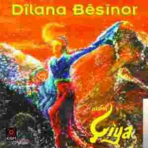 Dilana Besinor (2003) albüm kapak resmi
