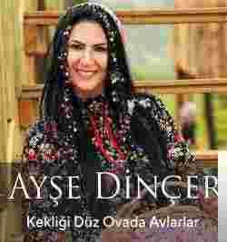 Kekliği Düz Ovada Avlarlar (2018) albüm kapak resmi