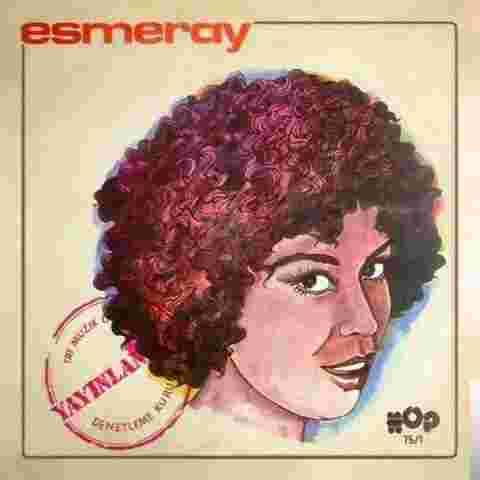 Yayınlanmaz (1975) albüm kapak resmi