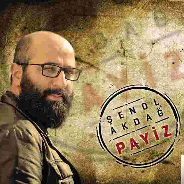 Payiz (2015) albüm kapak resmi
