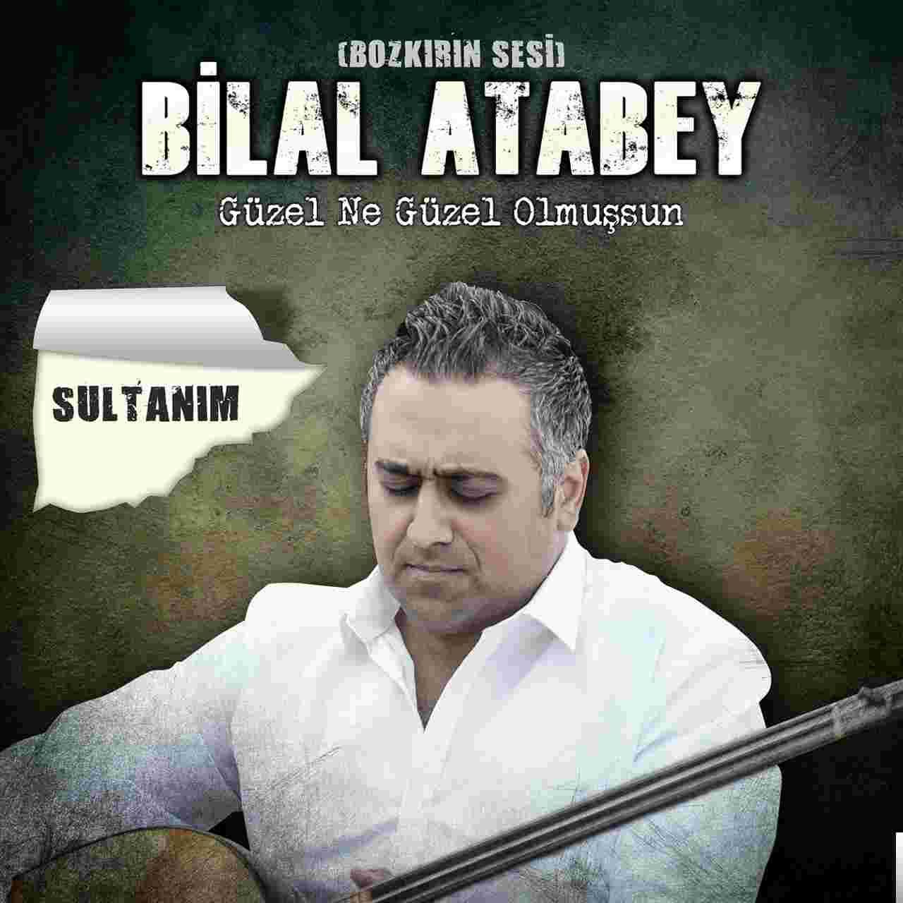 Sultanım/Güzel Ne Güzel Olmuşsun (2018) albüm kapak resmi