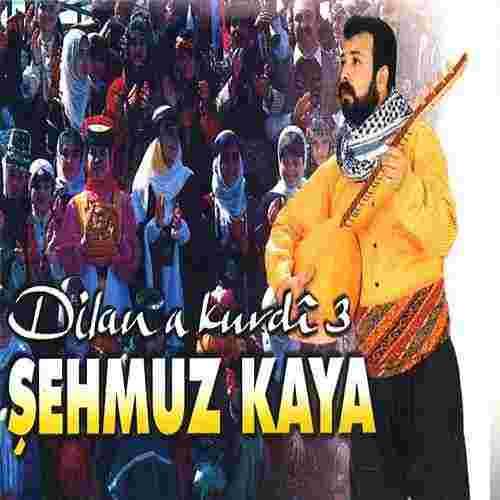 Dilana Kurdi (2012) albüm kapak resmi