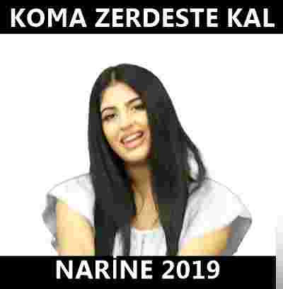 Narine (2019) albüm kapak resmi