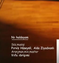 Ne Haldayam (2019) albüm kapak resmi