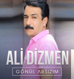 Gönül Arsızım (2007) albüm kapak resmi