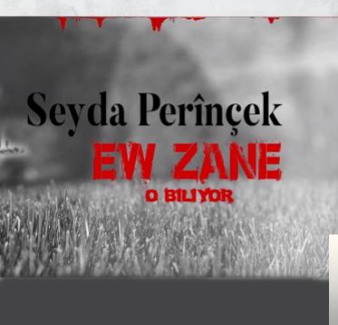 Ew Zane (2019) albüm kapak resmi