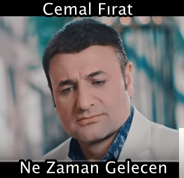 Ne Zaman Gelecen (2019) albüm kapak resmi