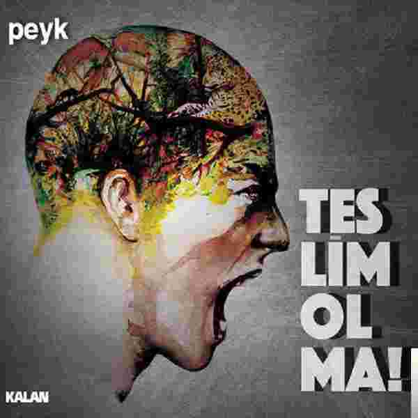 Teslim Olma! (2014) albüm kapak resmi