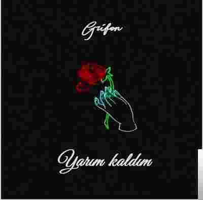 Yarım Kaldım (2019) albüm kapak resmi