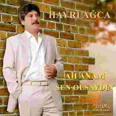 Ah Anam Sen Olsaydın (2019) albüm kapak resmi