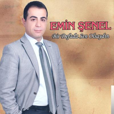 Bir Defada Sen Olsaydın (2012) albüm kapak resmi