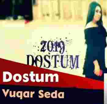 Dostum (2019) albüm kapak resmi