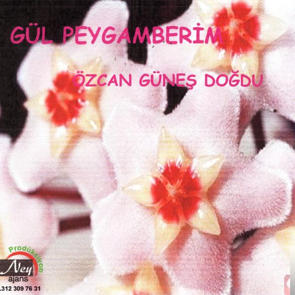 Gül Peygamberim (1998) albüm kapak resmi