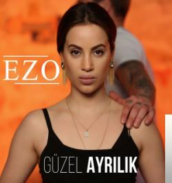 Güzel Ayrılık (2019) albüm kapak resmi