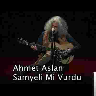 Sam Yeli Mi Vurdu (2019) albüm kapak resmi