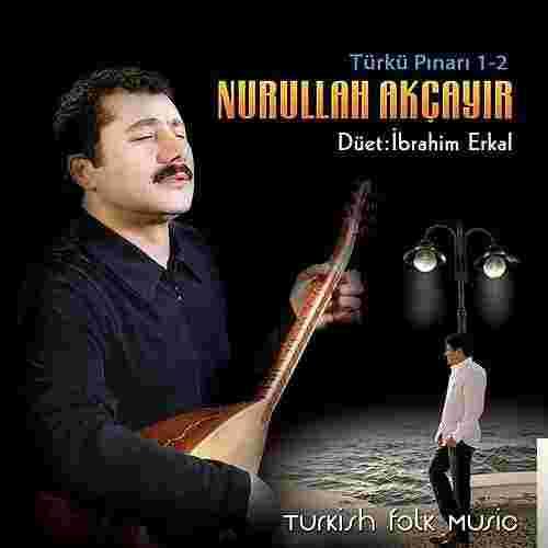 Türkü Pınarı 1,2 (2001) albüm kapak resmi