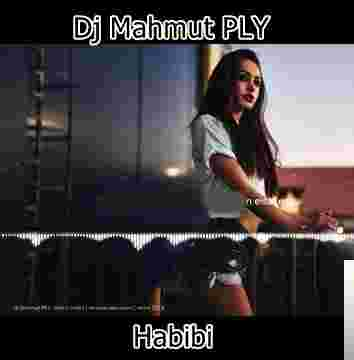 Habibi (2019) albüm kapak resmi