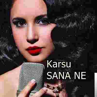 Sana Ne (2019) albüm kapak resmi