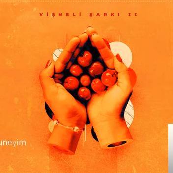 Vişneli Şarkı (2019) albüm kapak resmi