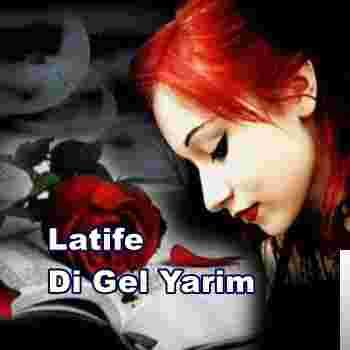 Di Gel Yarim (2009) albüm kapak resmi